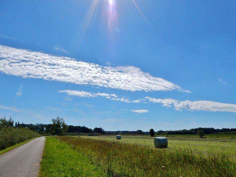In Limburg was de meest zon te vinden. Deze mooie zomerse foto werd gemaakt door Marina Nefkens.