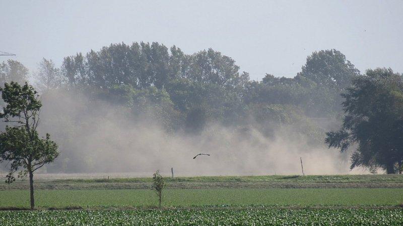 de regen is meer dan welkom, want september is een hele droge maand geweest. Foto is van Jannes Wiersema.