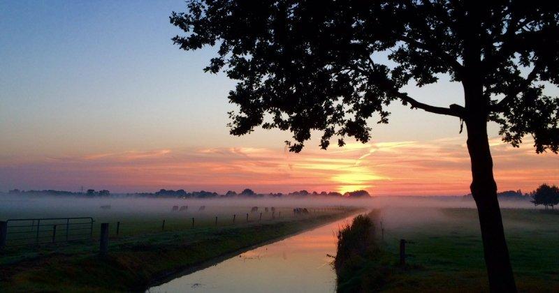 De dag begon gisteren met een zeer fraaie zonsopkomst in combinatie met nevel en mistflarden. De foto werd gemaakt door Leo Kemper.