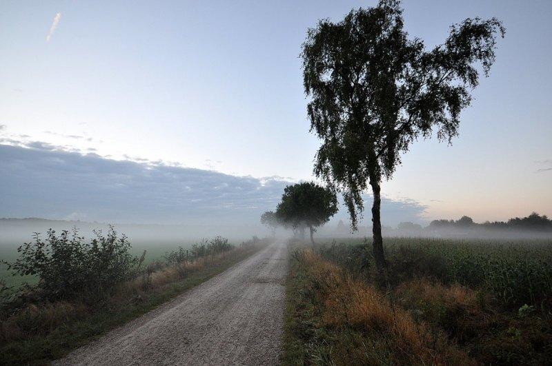 Het is uitermate rustig weer en de start van de dag is dan ook nevelig. Deze foto werd gemaakt door Ben Saanen.