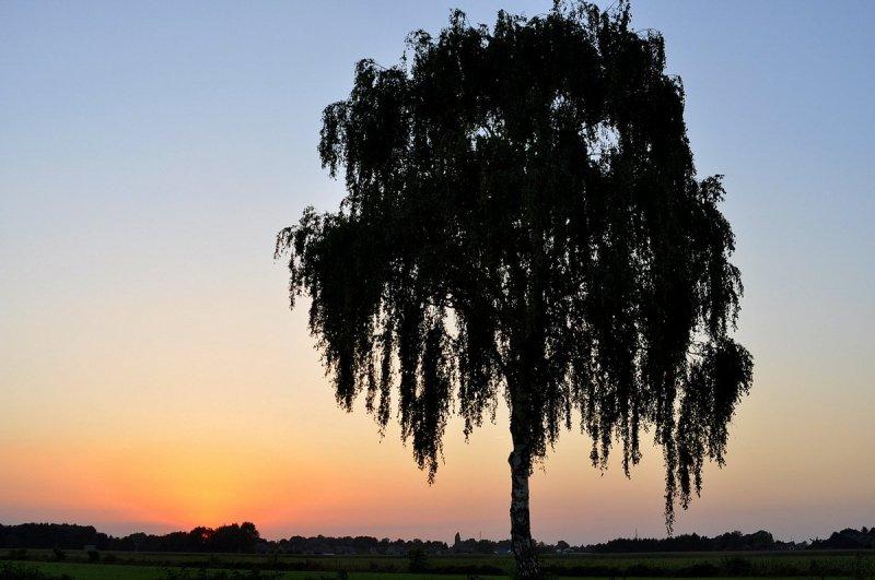 Ondanks de afwezigheid van wolken, was de zonsondergang weer erg fraai. De foto werd gemaakt door Ben Saanen.
