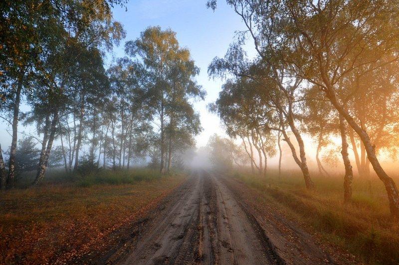De dag begon gisteren erg fraai met een combinatie van zon en mist/nevel. Goed te zien dat de herfst langzaam dichterbij komt. De foto werd gemaakt door Ben Saanen.