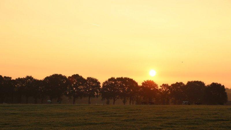 De dag begon gisteren fraai in het binnenland. Deze prachtige foto werd gemaakt door Martin Vye.