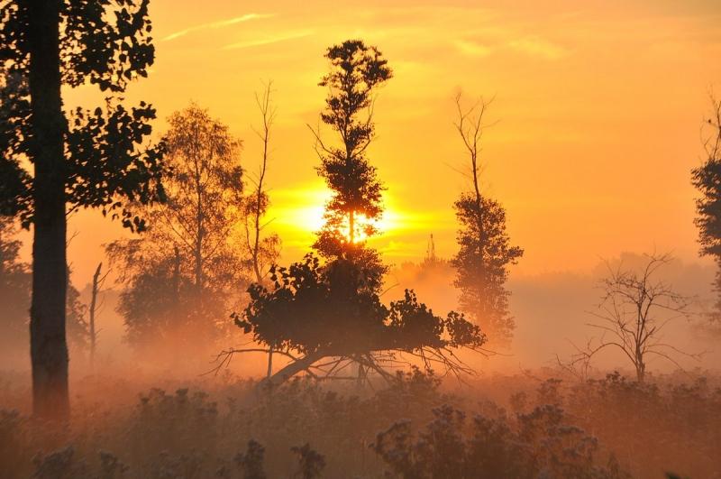 Omdat het zo mooi was... De dag begon ook in het zuiden fraai. Deze foto werd gemaakt door Ben Saanen.