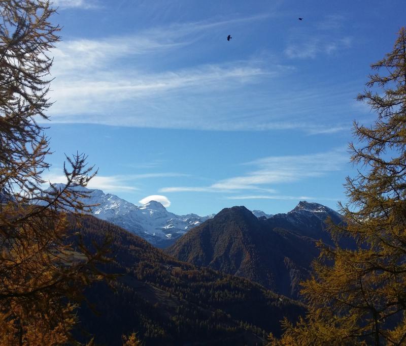 Aan prachtige panorama's geen gebrek deze dagen. De herfstkleuren steken vaak mooi af tegen de witte bergtoppen. (Simplon) Bron: twitter Alpenweerman