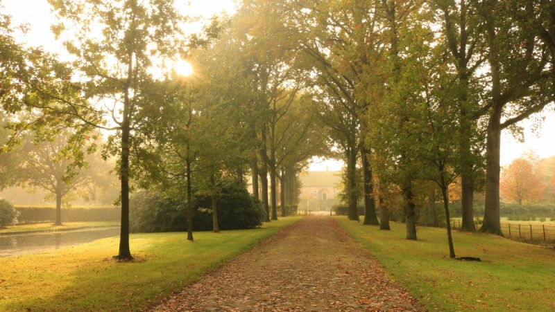 Ook Martin Vye maakte een schitterende herfstfoto.