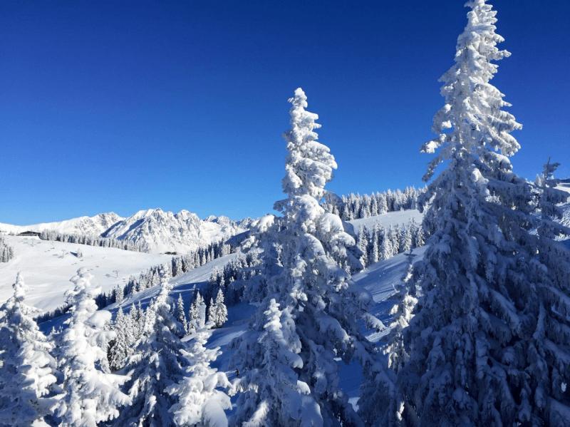 skiwelt_teaser