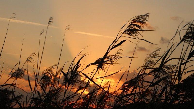 de zon ging gisteren nog fraai onder. De foto werd gemaakt door Martin Vye.