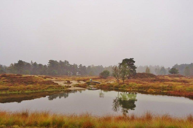 een prachtige herfstfoto van Ton Wesselius gisterochtend gemaakt.