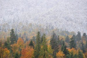 Prachtig om te zien, herfst en winter op één foto. Bron: facebook Alpenweermannen