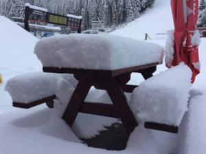 Afgelopen dagen viel er een dik pak sneeuw in Oost-Europa. Bron: twitter Alpenweermannen