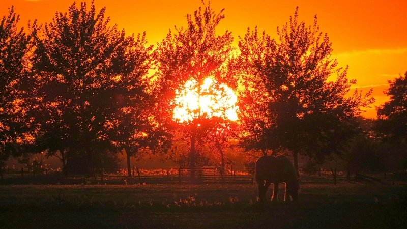 de zon ging gisteren weer fraai onder. De gekleurde foto werd gemaakt door Jannes Wiersema.