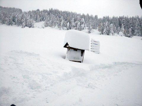 Vandaag kunnen de hoeveelheden degelijk opgemeten worden (Bardonecchia) Bron: twitter Severe-Weather Europe