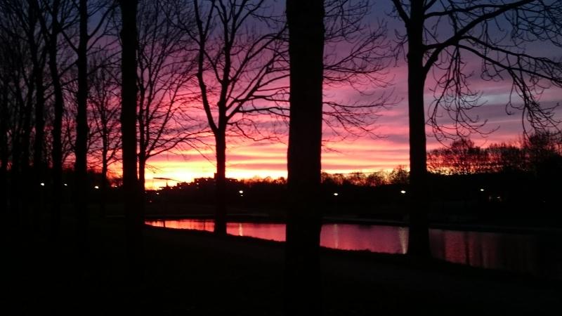 de zonsondergang was prachtig gisteren. Deze foto werd gemaakt door Fijja Schröder