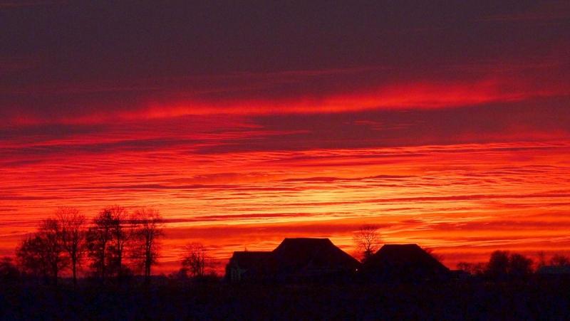 Deze kleurrijke foto werd gemaakt door Jannes Wiersema.