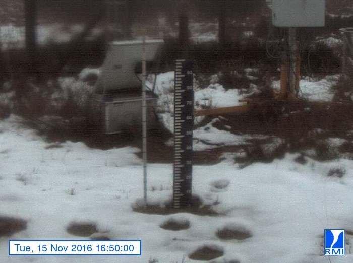 Op de Mont-Rigi (670 meter hoogte) in de Hoge Venen is de sneeuw weer behoorlijk aangetast...