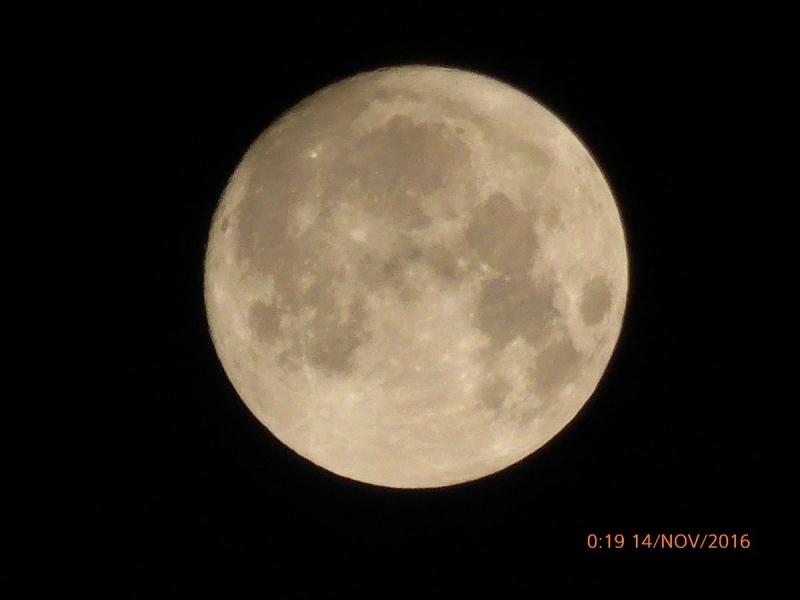 Gisternacht was de supermaan wel zichtbaar. Afgelopen nacht overheerste de bewolking. Deze foto werd gemaakt door Han van den Dries