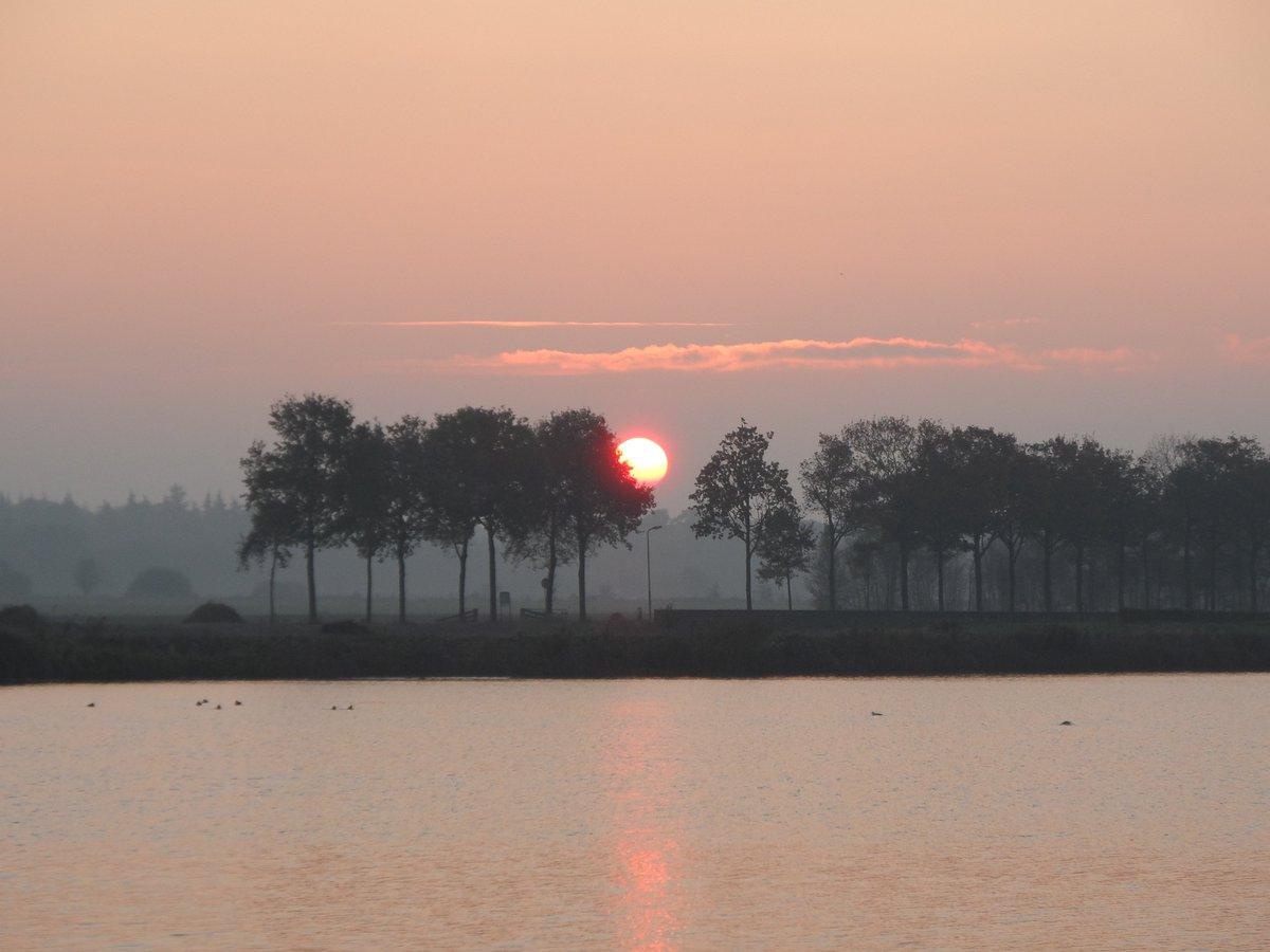 de zon kwam gisteren fraai op en bleef ook de hele dag schijnen. De foto werd gemaakt door Albert Thibaudier