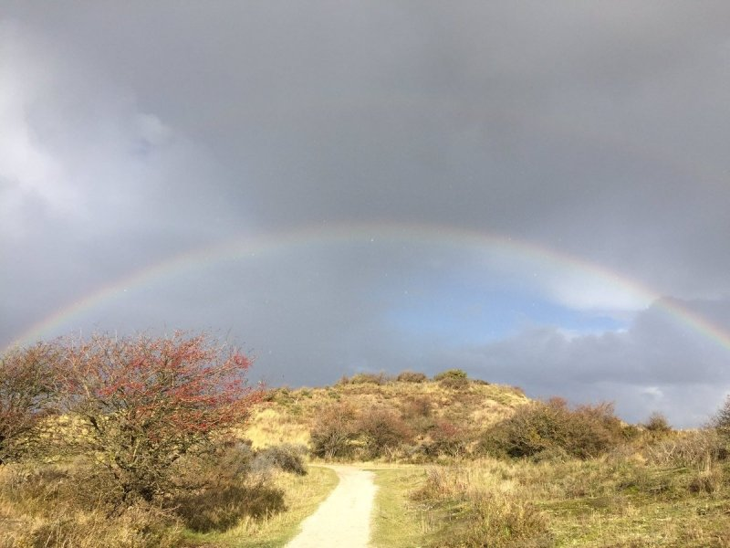 buien en zon leveren weer regenbogen op. Deze foto werd gemaakt door Melanie Risse.