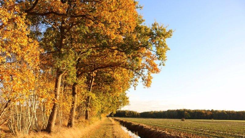 In delen van het land was het prachtig weer met flink wat zon. De foto werd gemaakt door Martin Vye.