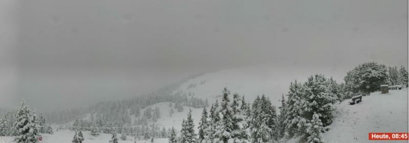 Prachtig, de sneeuw die tegen de bomen plakt. Locatie dicht bij het Parc National de la Vanoise. Bron: bergfex.com