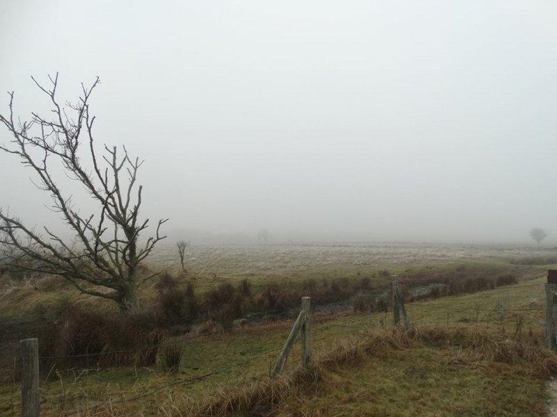 ook deze grijze foto werd gemaakt door Marijk Beekman.