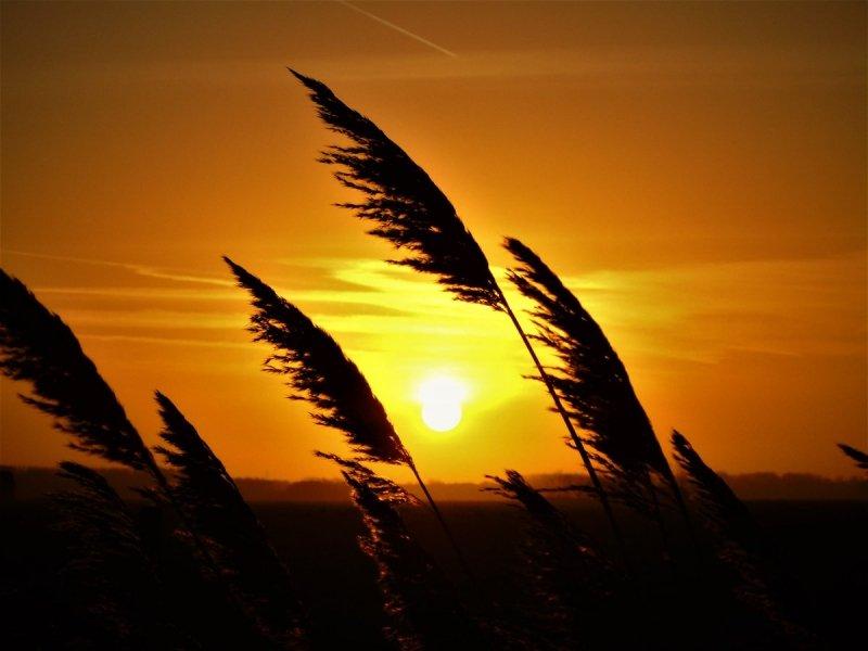 de zonsondergang was erg fraai. Deze foto werd gemaakt in Friesland. Bron: @SevereWeather_N