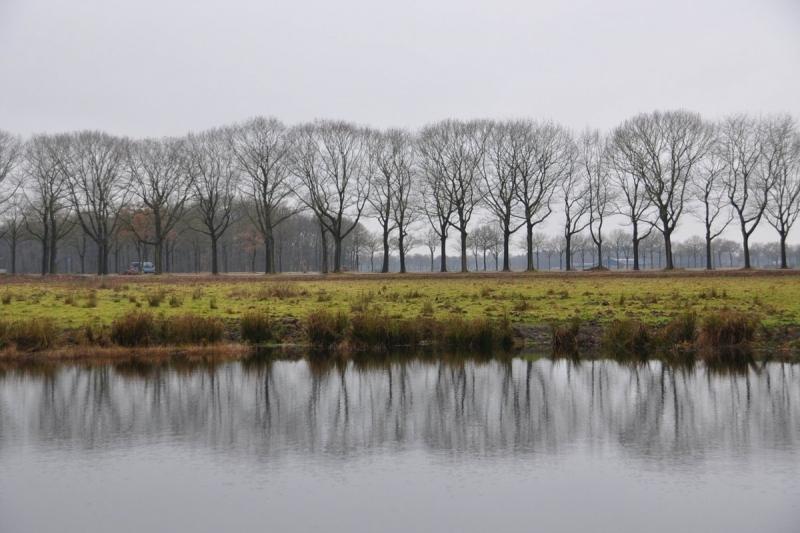 niet overal scheen gisteren de zon, want in het zuidoosten bleef het grijs en bewolkt. De foto werd gemaakt door Ben Saanen.