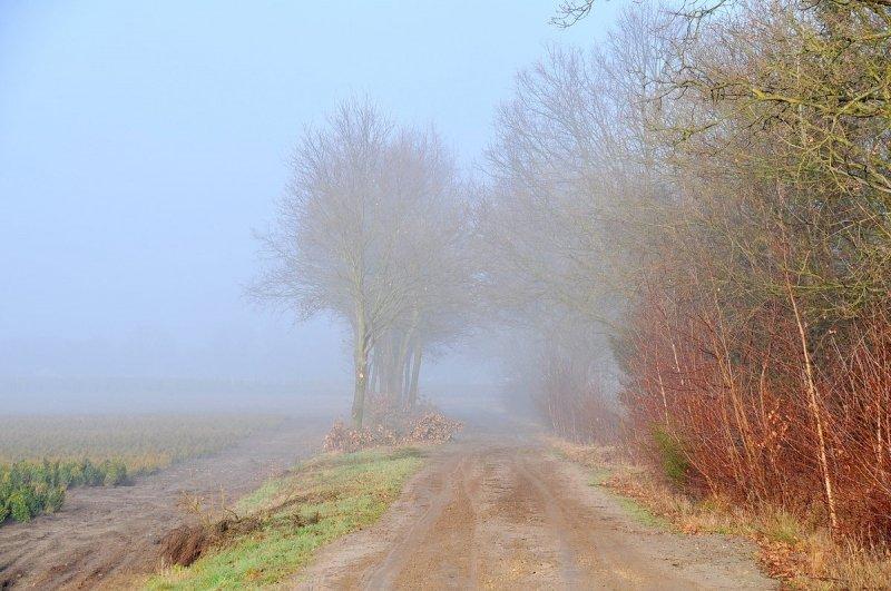op sommige plaatsen bleef de grijzigheid hardnekkig. Deze foto werd gemaakt door Ben Saanen.