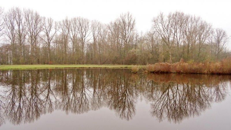 het was een grijze dag gisteren, maar Ton Wesselius maakte er toch nog een mooie foto van.