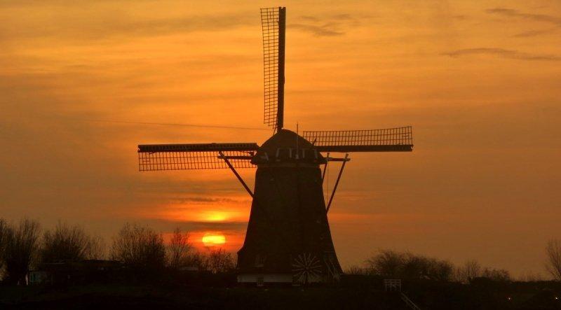 Na een grijze en bewolkte dag kwam later toch nog heel even de zon tevoorschijn bij Ton Wesselius.