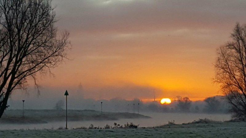een fraaie foto van het ochtendkrieken. Mark Wolvenne maakte deze.